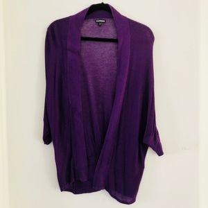 Express Sweaters - 🌺Pretty Purple Lightweight Sweater